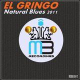 NATURAL BLUES - DJ Gringo vs moby