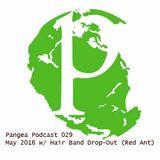 Pangea Podcast 029 - May 2016 w/Hair Band Drop-Out aka Andy Mara.