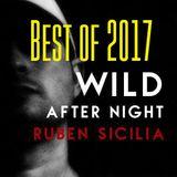 Ruben Sicilia - Wild After Night vol.118 (best of 2017)