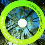 Magic Spring Ride :: Mixed By Andre Engert 3.2014