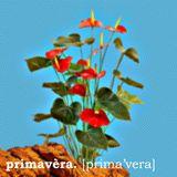 Primavera mix (01/04/11)