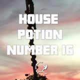 House Potion Number 16