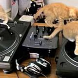 G-Force Society Music Presents : ELEKTRONIKS MOVEMENTS #O2