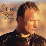 Sting - Desert Rose  (Tommer Mizrahi Remix)