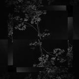 R.Berg - Ritual / Novel / Bismuth