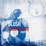 Blush The DeeJay - Groovology Pt. 3 [Summer Edition]
