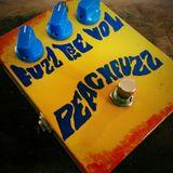 PeachFuzz demo