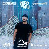 Dj Flawless - Pitbulls Globalization SiriusXM PuroPari Mix