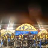"2017 PANO-FINALS LARGE 9 / TROPICAL ANGEL HARPS ""SINGLE"" (No.11 -270.5 pts)"
