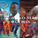 Zaiko Ngwasuma Mix 2014