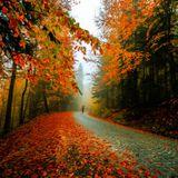 crossfiyadj - autumn mix up