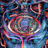 Psychedelic Vibrations