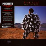 (172) Pink Floyd - Delicate Sound Of Thunder (1988)