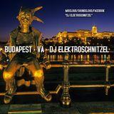 BUDAPEST - VA - DJ ELEKTROSCHNITZEL