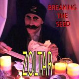 Breaking The Seed - 'ZOLTAR' Live @ Burning Seed 2015