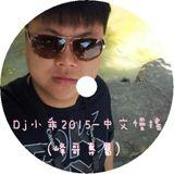 DJ小乖 2015 - 中文慢搖(峰哥專屬)