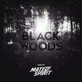 Mateo & Spirit - Black Woods
