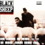 Black Sheep - The Choice is Yours (Funky V3N0M Mix)