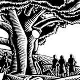 12 - ecologismo y feminismos