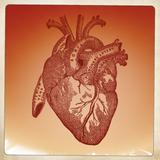 Dainos Dainai #49 Weedska: Širdis širdžiai