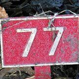 TenMix Vol.77
