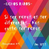 BICHOS RAROS PROGRAMA #5