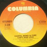 Earth,Wind And Fire - Can't hide love (MAW Remix)