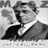 Shake the Walls Mini Mix