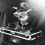 Kenko Da Tech House Kat (Krazy Kitten's Mix) #001