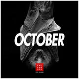 Steve Callaghan - October Mini-Mix [2017]