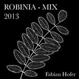 ROBINIA - MIX 2013