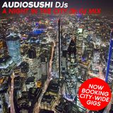 Audio Sushi : Night in the City DJ Mix ( Now Booking 2018 onwards )