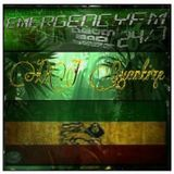 #65 Emergency FM - Jungle Show - May 13th 2014 (Part 1)