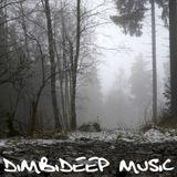 The DimbiDeep Files mixed by Dimbidub