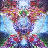 Psychedelic Organica (2nd Dimension) (2018)