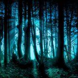 Progressive Forest Pt.2
