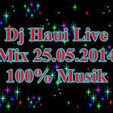 Dj Haui Live Mix 25.05.2014 100% Musik