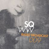 "SWQW Radio Broadcast 009 - Hommage à Raster-Noton + Playlist ""Disturbing Meeting Above The Clouds"""