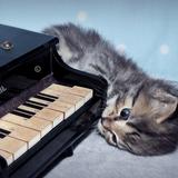 Piano Thing