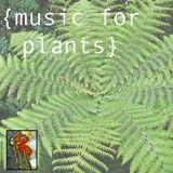 MUSIC FOR PLANTS: VOL 1: SOFT DIRT