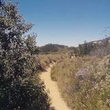 Temescal Canyon