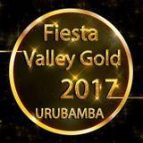VALLEY GOLD 2017 - TEASER