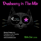 Pusheeny In The Mix (Dunny Freeze Tuesday Edition)