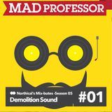 Demolition Sound - Mix-bute to Mad Professor (northical) 7/1/16