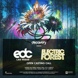 """Electric Forest / EDC Vegas Open Casting Call 2017"""