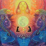 SHADOWLS DJ SET - MYSTICAL VOYAGERS VISIONARY SHAMANICS SHOW - 15/02/14
