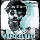 Visiting Stevie's Wonderland