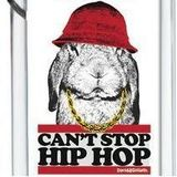 Can't Stop the Hip Hop