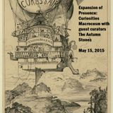 Expansion of Presence : Curiosities Macrocosm with guest curator The Autumn Stones