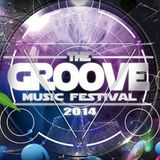 Can You Feel It? :The Groove Music Festival 2014